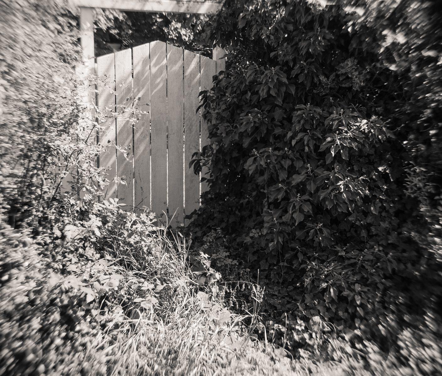 Photo: 15th Gate