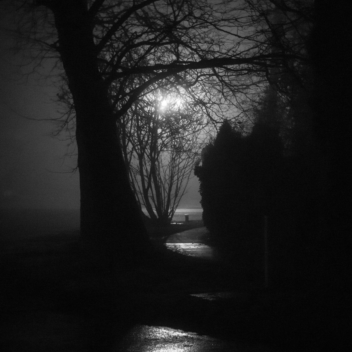 Photo: Broadway Fog, Bellingham, WA