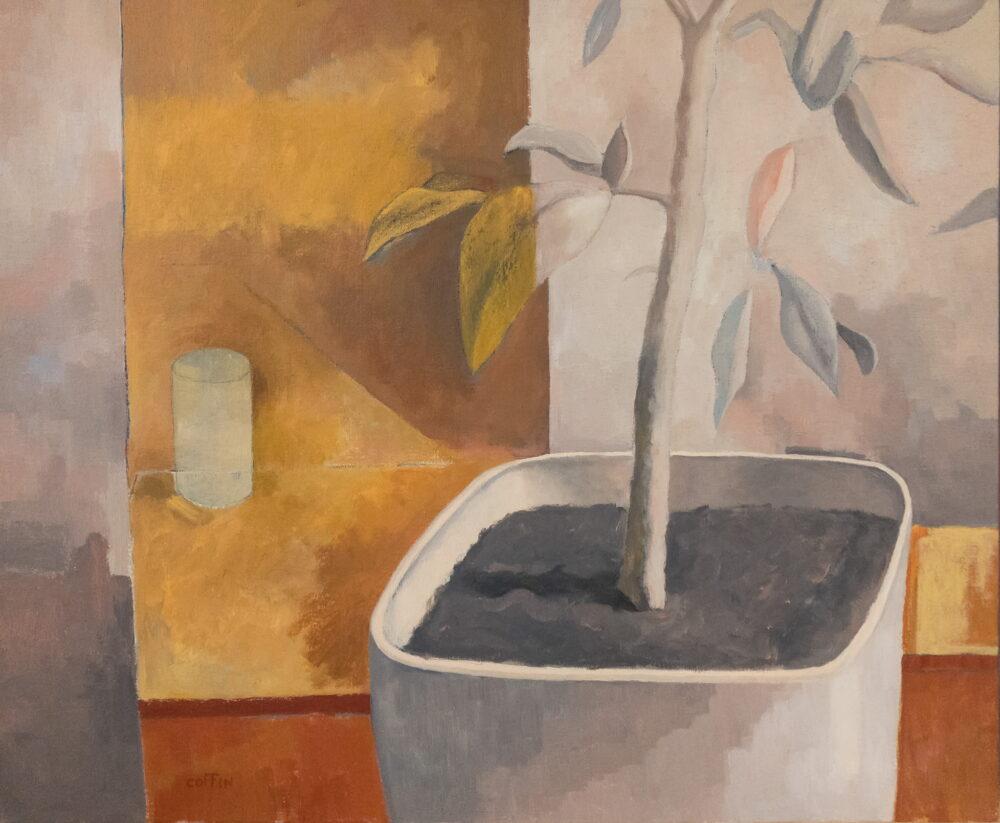 Schefflera, 2021 Acrylic on canvas, 20 x 24 inches